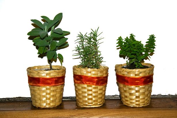 groene kruiden helpen bij het afvallen
