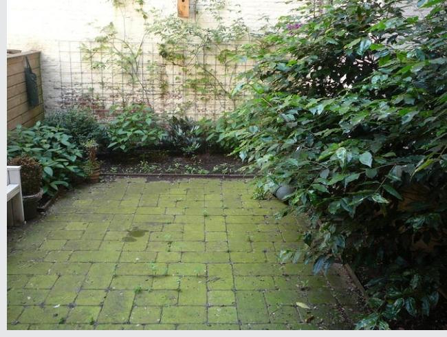 fit en slank door groene tegels schoon te maken On tegels tuin schoonmaken