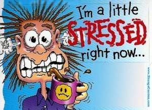 geen stress alles komt goed