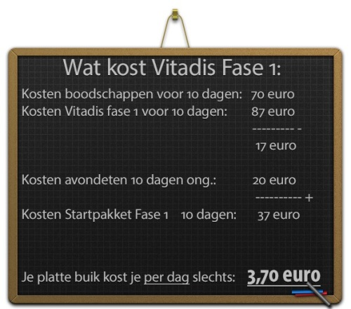 wat-kost-vitadis1