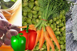 de 5 beste anti verouderings groenten